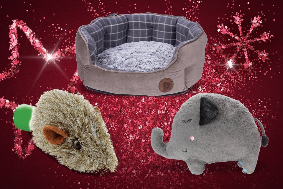 A selection of pet gifts including a dog bed and cuddly toys.