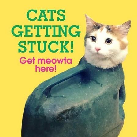 RANDOM HOUSE UK - Cats Getting Stuck!