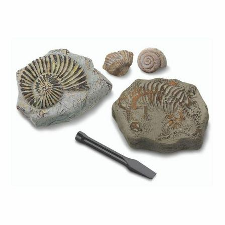 DISCOVERY MINDBLOWN - Discovery Mindblown Excavation Kit Mini Fossil