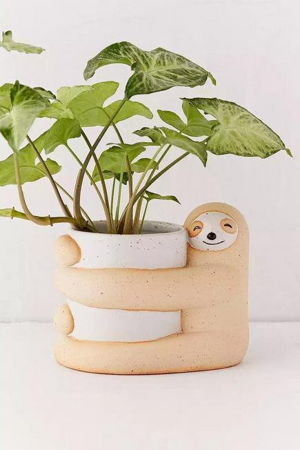 Urban Outfitters - Assorted Sloth Planter