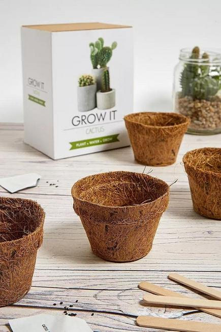 Urban Outfitters - ASSORT Grow It Cactus Kit