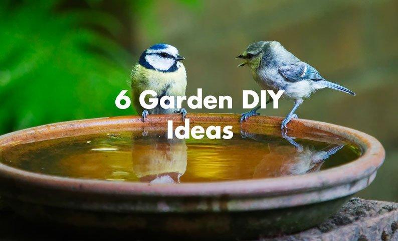 6 Garden DIY Ideas
