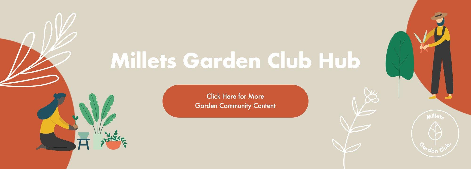 A picture of the Millets Garden Club Photo of the Month March Prizes