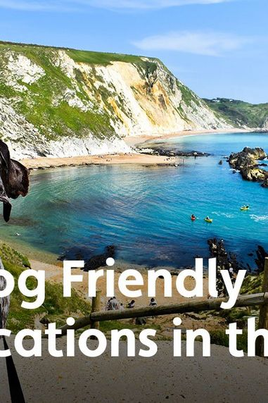 10 Dog Friendly Staycations in the UK
