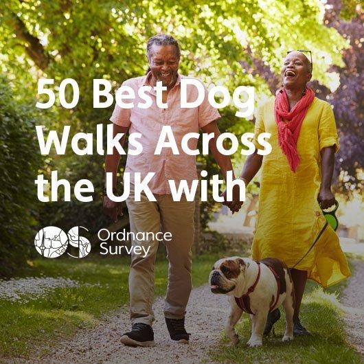 50 Best Dog Walks Across the UK with Ordnance Survey