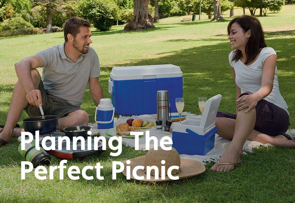 Planning The Perfect Picnic