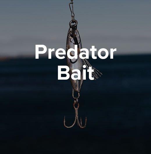 Predator Bait