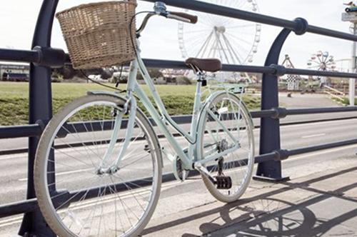 Bike Fleets